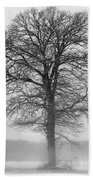 Lonely Winter Tree Beach Towel