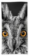 Long Eared Owl 2 Beach Towel