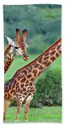 Long Necks Together Beach Towel