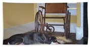 Long Wait - Dog - Wheelchair Beach Towel