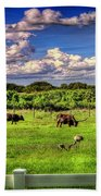 Longhorns At The Ranch Beach Towel