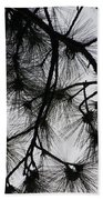 Longleaf Lace Beach Towel