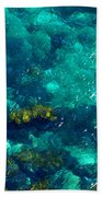 Looking Down At Shellow Water Beach Towel