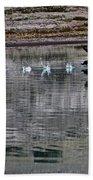 Loon In Greenland Beach Sheet