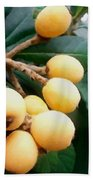 Loquats In The Tree 3 Beach Towel
