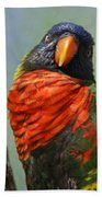 Lorikeet Beach Towel
