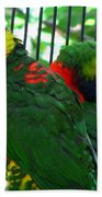 Lory Beach Towel