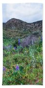 Lost Canyon Wildflowers Beach Towel