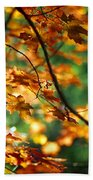 Lost In Leaves Beach Towel