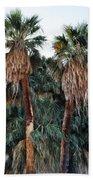 Thousand Palms Oasis  Beach Towel