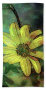Lost Wild Flower In The Shadows 5771 Ldp_2 Beach Towel