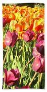 Lots Of Tulips Beach Towel