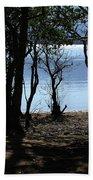 Lough Leane Through The Woods Beach Towel
