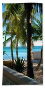Louie's Backyard Beach Towel by Susanne Van Hulst