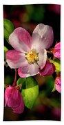 Louisa Apple Blossom 001 Beach Towel