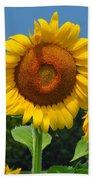 Louisa, Va. Sunflower 6 Beach Towel