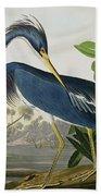 Louisiana Heron Beach Towel by John James Audubon