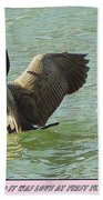 Love At First Flight Beach Towel