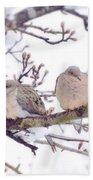 Love Is In The Air - Mourning Dove Couple Beach Towel