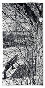 Love On A Tree Beach Sheet