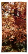 Lovely Autumn Tree Beach Towel