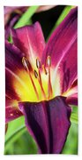 Lovely Day Lily Beach Towel