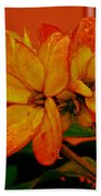 Lovely Flowers1 Beach Towel