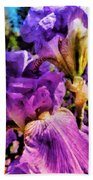 Lovely Iris Beach Towel