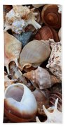 Lovely Seashells Beach Towel