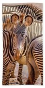 Lovely Stripes  7589 Beach Towel