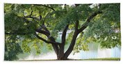 Lovely Tokyo Tree With Pond Beach Towel