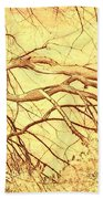 Lovely Twists In Nature Beach Towel