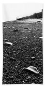 Low Tide At Linwood's House 26 Beach Towel