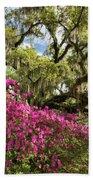 Lowcountry South Carolina Spring Azalea And Live Oak Beach Towel