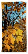 Luminous Leaves Beach Towel