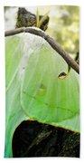 Luna Moth No. 3 Beach Towel