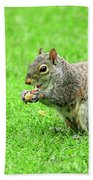 Lunchtime In The Park Beach Towel
