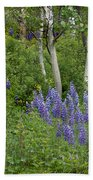 Lupine And Aspens Beach Towel