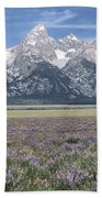 Lupine And Grand Tetons Beach Towel by Sandra Bronstein