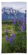 Lupine Beauty Beach Towel