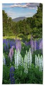 Lupine In The Valley Beach Towel