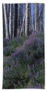 Lupine On Mt. Washburn - Yellowstone Beach Towel