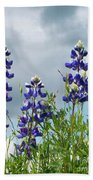 Lupines Against The Sky Beach Towel
