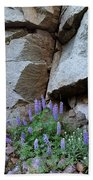 Lupines And Rock Face Beach Towel