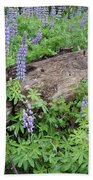 Lupines And Windfall Beach Towel