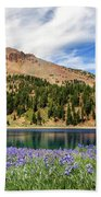 Lupines Lake And Lassen Beach Towel