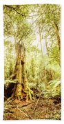 Lush Tasmanian Forestry Beach Towel