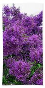 Luxurious Lilacs Beach Towel