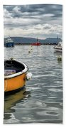 Lyme Regis Harbour - March Beach Towel