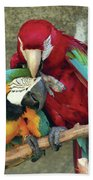 Macaw Love Beach Towel